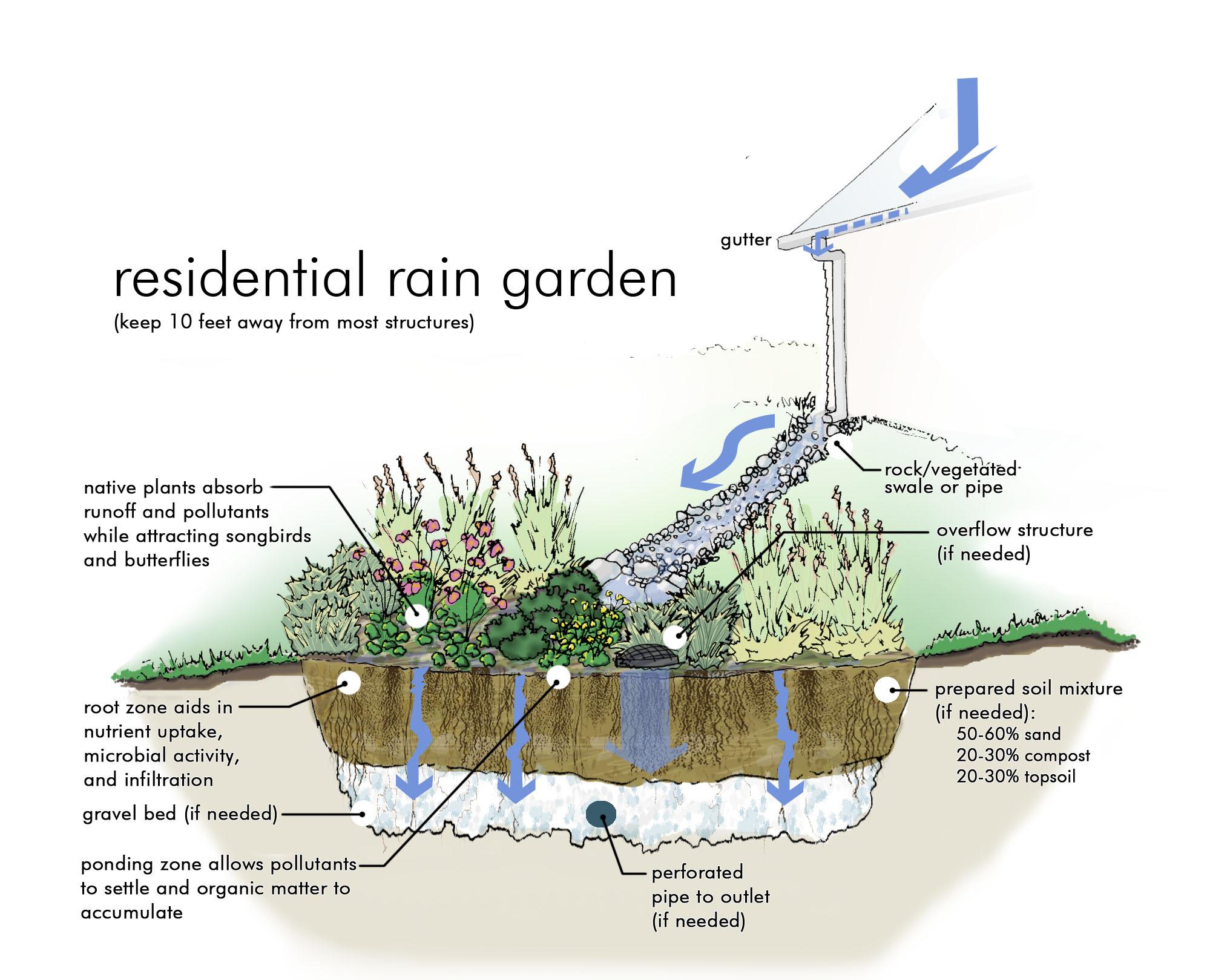 Rain Garden Ideas Free rain garden workshop in county the clermont sun workwithnaturefo